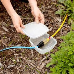 Reusable Plastic Container Two Extension Cords Protection From The Elements