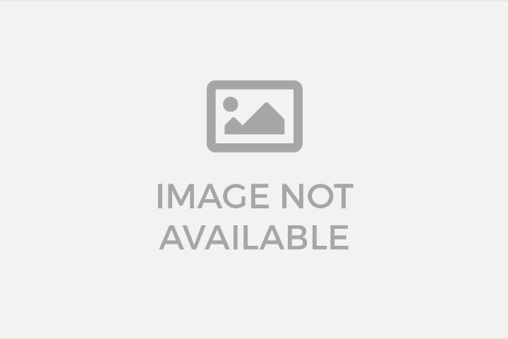 Stuttgart vs Borussia Dortmund EN VIVO ONLINE