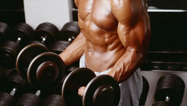 PowerHouseFitness-Tips For Your Best Biceps Exercise