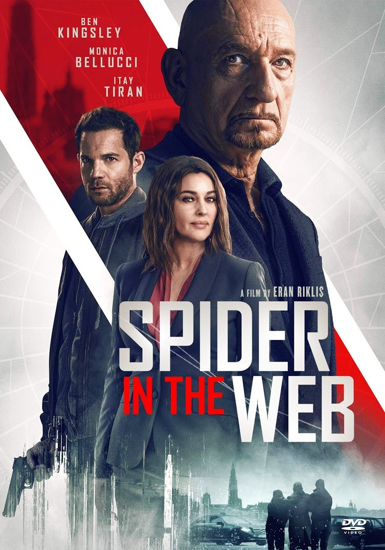 Spider in the Web [2019] [DVDR] [NTSC] [Latino]