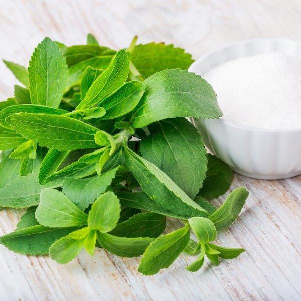 Alternatif Konsumsi Gula Menggunakan Tanaman Stevia dari Hutan