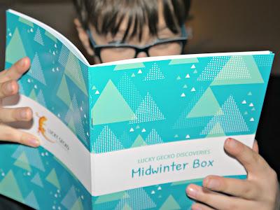 Lucky Gecko Midwinter Activity Box
