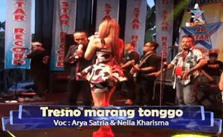 Lirik Lagu Tresno Marang Tonggo - Nella Kharisma