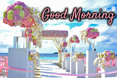 Download Images of Good Morning