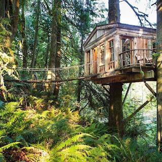 casa de arbol hotel costa rica