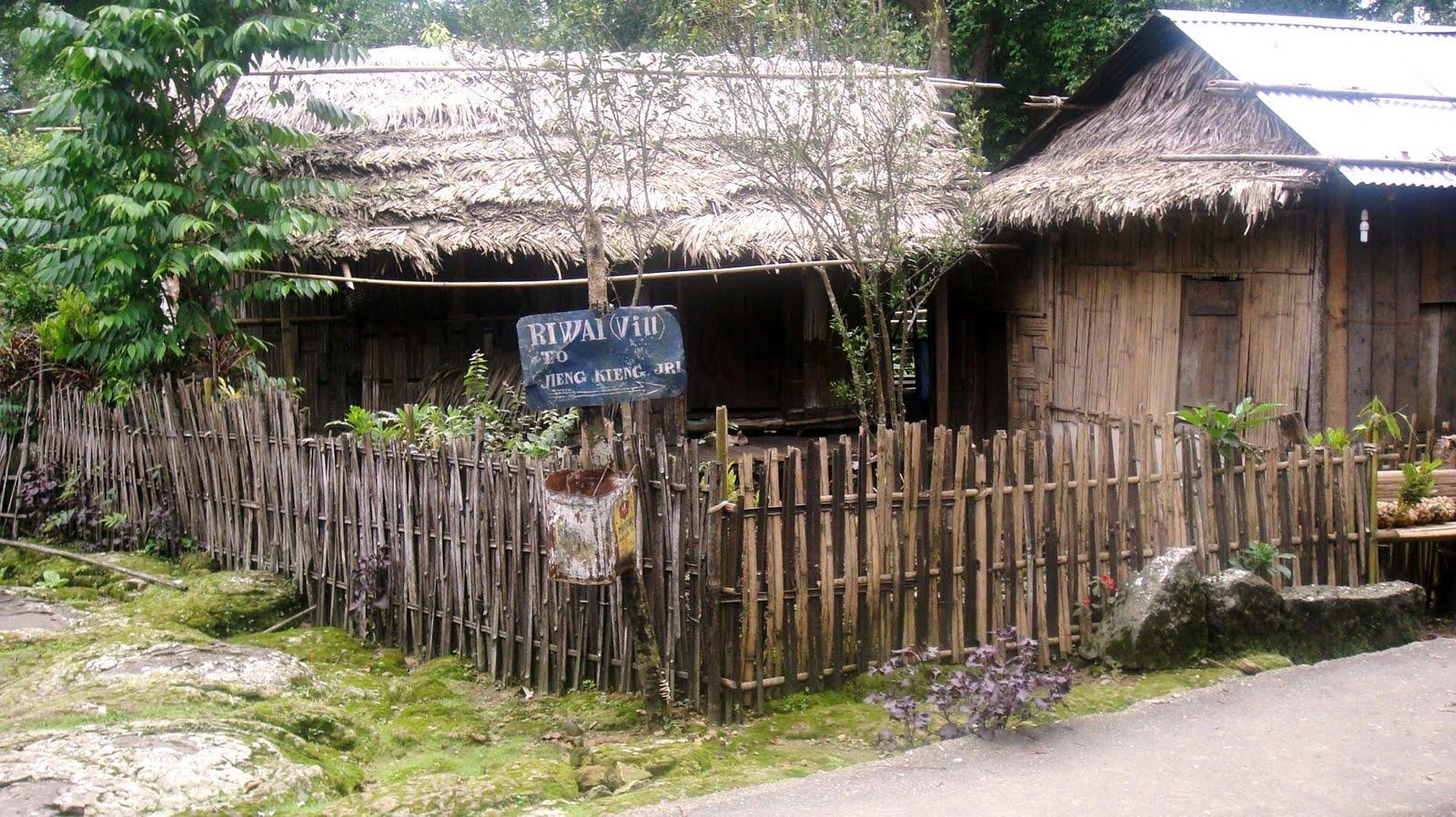 my room: Jingkieng Jri : Living Root Bridge Of Riwai of ...