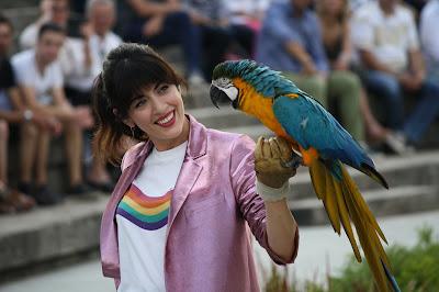 parc des oiseaux, ara