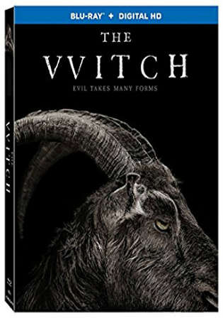 The Witch 2015 BRRip 700MB Hindi Dual Audio ORG 720p Watch Online Full Movie Download bolly4u