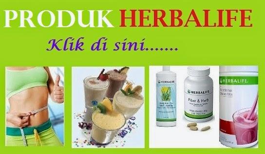 Menu Diet Seminggu Cara Diet Cepat Sebulan Diet Herbalife Turun