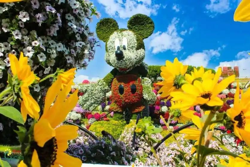 ميكي ماوس حديقة الزهور في دبي