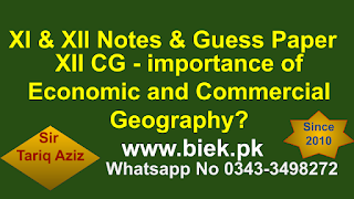 Explain the importance of Economic and Commercial Geography