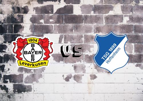 Bayer Leverkusen vs Hoffenheim  Resumen