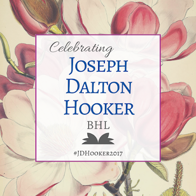 Celebrating Joseph Dalton Hooker