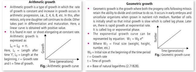 Types of Growth (Based upon the growth rate)