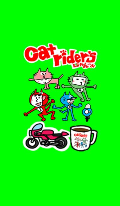 고양이 라이더들 (귀여운 리액션).