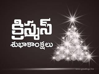 christmas wishes in telugu.christmas subhakankshalu.
