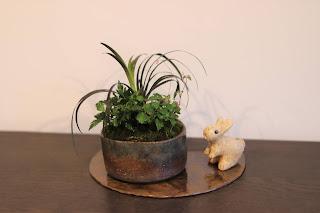 盆栽作品 うさぎの人形と共に