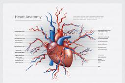 Cara Menjaga Kesehatan Jantung Agar Tetap Sehat