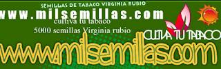 Cultiva tu Tabaco si lo necesitas claro..semillas de calidad en www.elbonillo.com