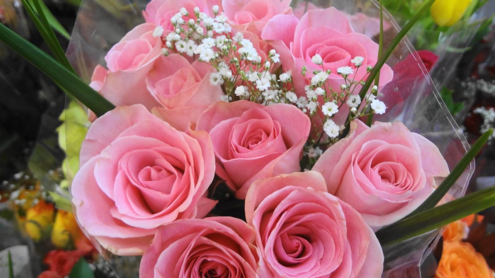grave flowers walmart » Best Poppy Flower | Poppy Flower