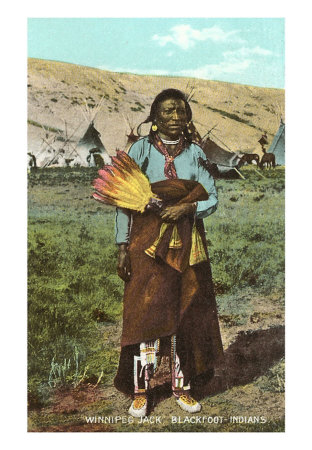 blackfoot indian indians native tribe americans american tribes cherokee history called jack winnipeg were african 1800s iroquois indianspictures woman nation