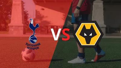 مشاهدة مباراة توتنهام ضد ولفرهامبتون 16-05-2021 بث مباشر في الدوري الانجليزي