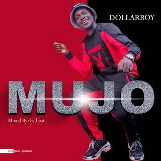 DollarBoy - Mujo (M&M by Fatbeat)