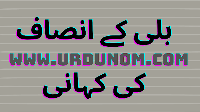 بلی کے انصاف کی کہانی | The new story of the cat in urdu
