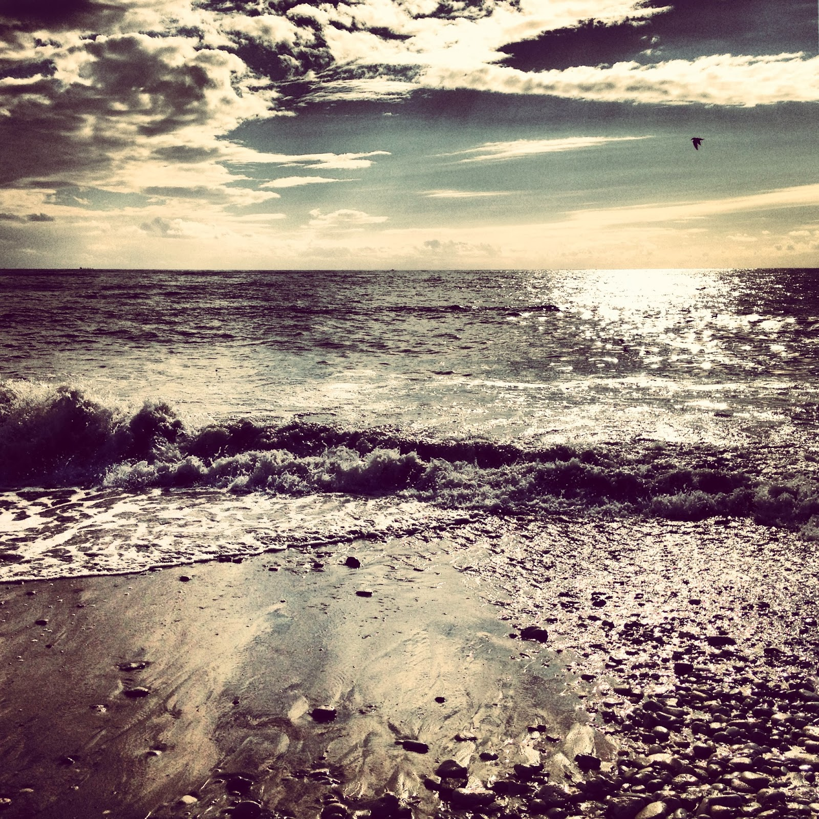 photo couché du soleil sur la plage de la côte sauvage