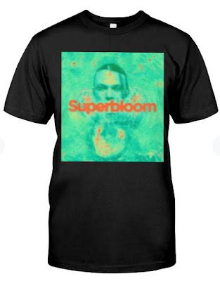 ashton irwin merch SUPERBLOOM T Shirt Hoodie Sweatshirt. GET IT HERE