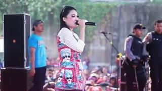 download lagu cinta terlarang antara kita dangdut koplo nella kharisma