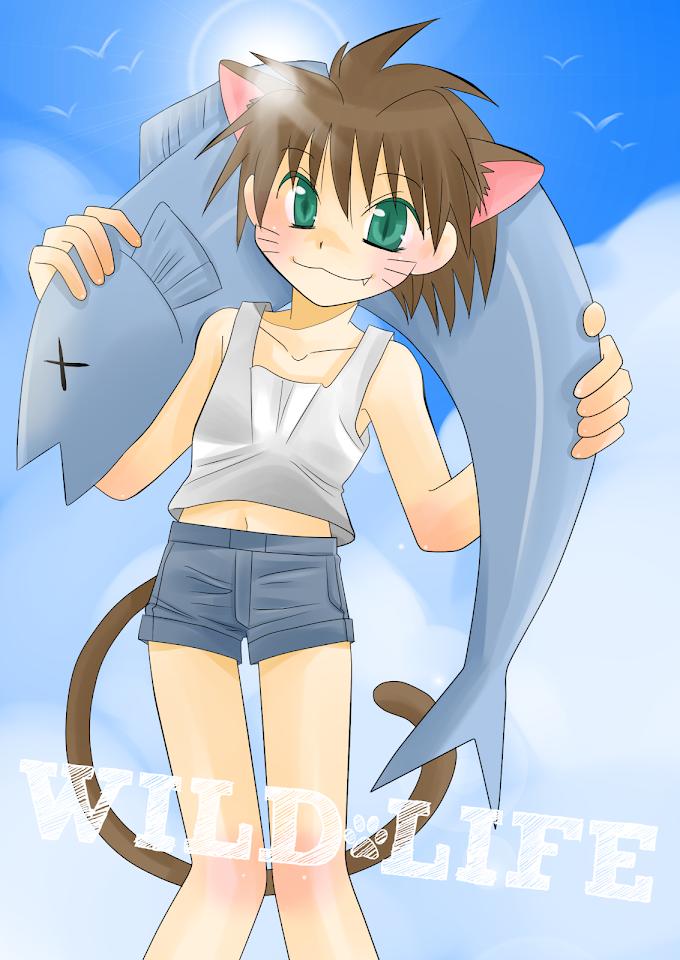 魚を背負った猫耳少女。