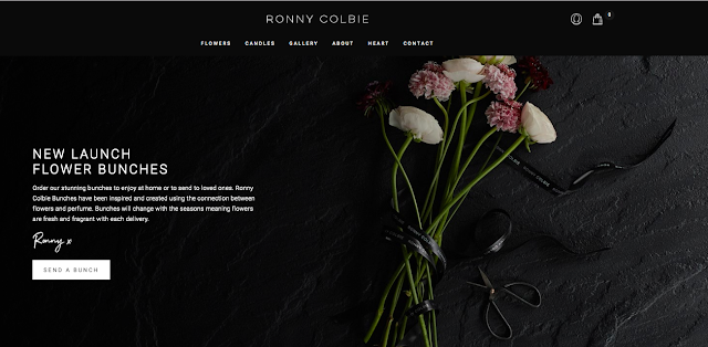 Ronnie Colbie Website Silky Ocean Studios Web Design For Small Business
