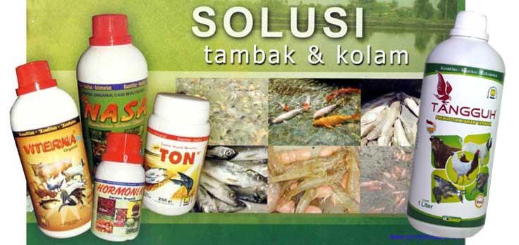 http://www.organiknusantara.com/2014/02/cara-budidaya-udang-dengan-produk.html