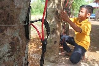 Listrik Dari Pohon Kedondong, Hebat Sekali Penemuan Bocah Ini, Tolong Share Untuk Mengharumkan Nama Bangsa