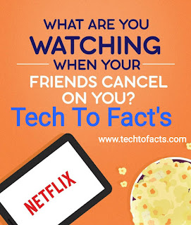 How did Netflix start?