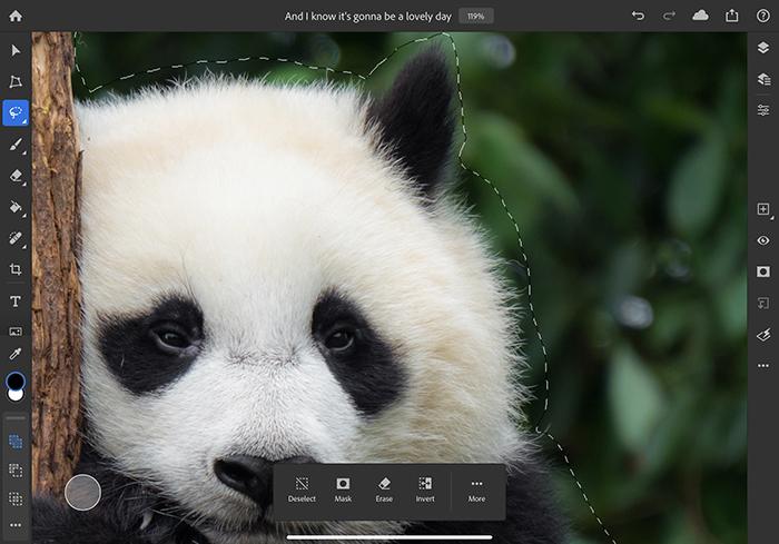 adobe-photoshop-app-for-ipad