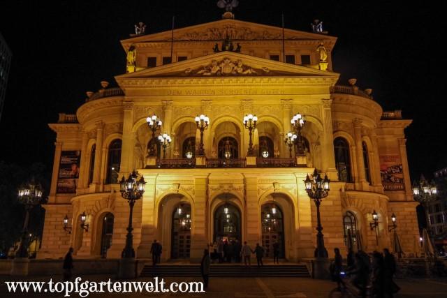 die Alte Oper in Frankfurt - Blog Topfgartenwelt