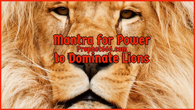 Spell for Power to Dominate Lions