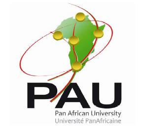 Pan African University Scholarships 2020/2021 | Masters & PhD Degree