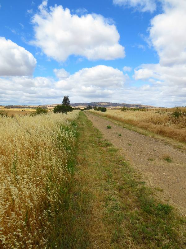 Dookie Rail Trail