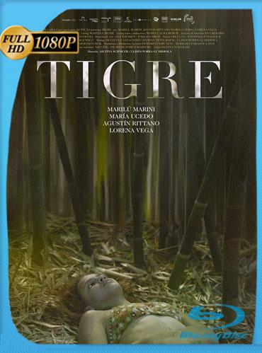 Tigre (2017) HD 1080p Latino [GoogleDrive] TeslavoHD