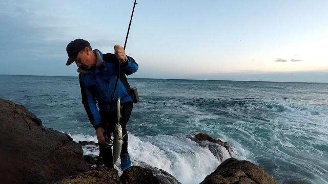 LUBINETA - Caña de spinning Fisterra en acción de pesca