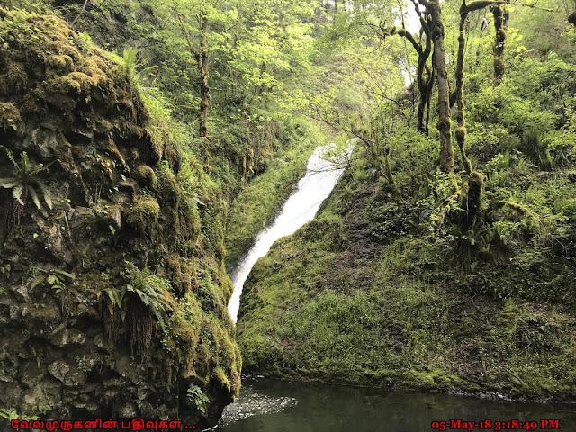 Bridal Veil Water Falls Columbia River
