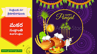 Telugu Sankranti Greetings image with ponga Sunl pots,banana leaf,new crop of sugar cane rice and Bull