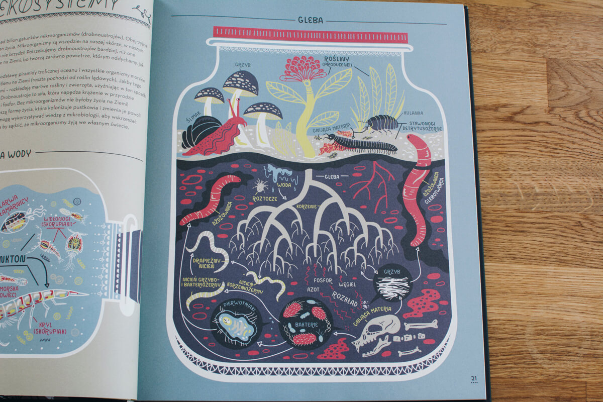 """Zdjęcie ze środka książki """"Wspaniała planeta Ziemia i jej przyroda"""""""