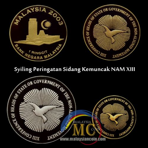 NAM XIII conference