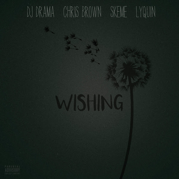 DJ Drama - Wishing (feat. Chris Brown, Skeme & Lyquin) - Single  Cover