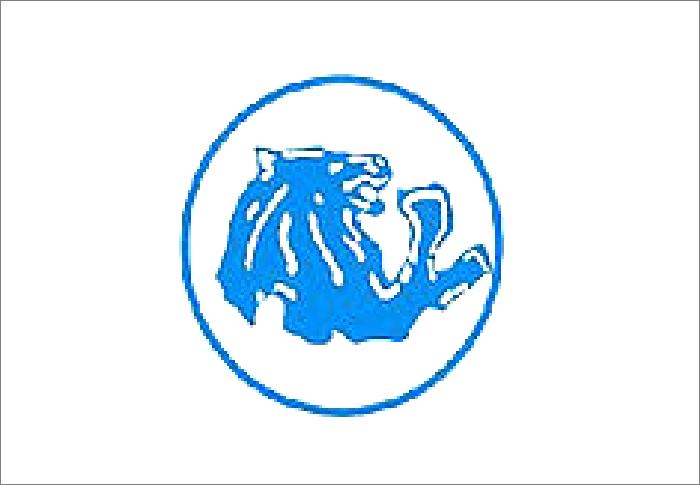 Sejarah Filosofi Logo Klub Arema Malang Lambang Singa Warna Ketenangan