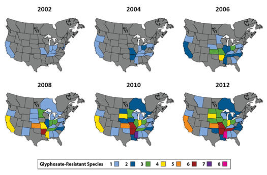 Geographic distribution of glyphosate resistant species